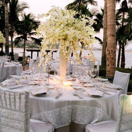 White dendrobium orchid centerpiece in Cabo San Lucas